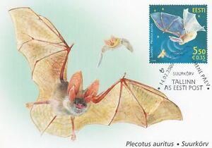 Bat-Plecotus-Auritus-Estonia-Estland-Maxi-FDC-2008