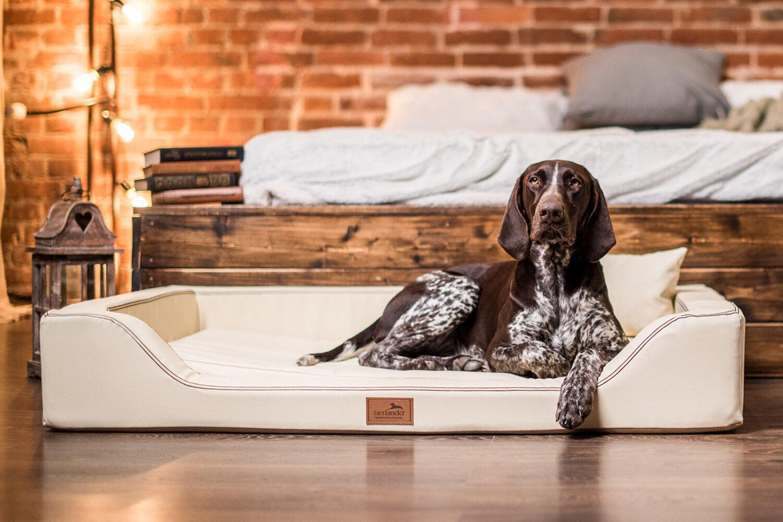 Tierlando ® ortopedico Lusso-letto Lusso-letto Lusso-letto per cani Melody Lattice Anti-capelli ECOPELLE aa00bc