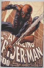 IM NETZ VON SPIDER-MAN (deutsch) # 25 VARIANT - Lim. 125 Ex - PANINI 2010 - TOP