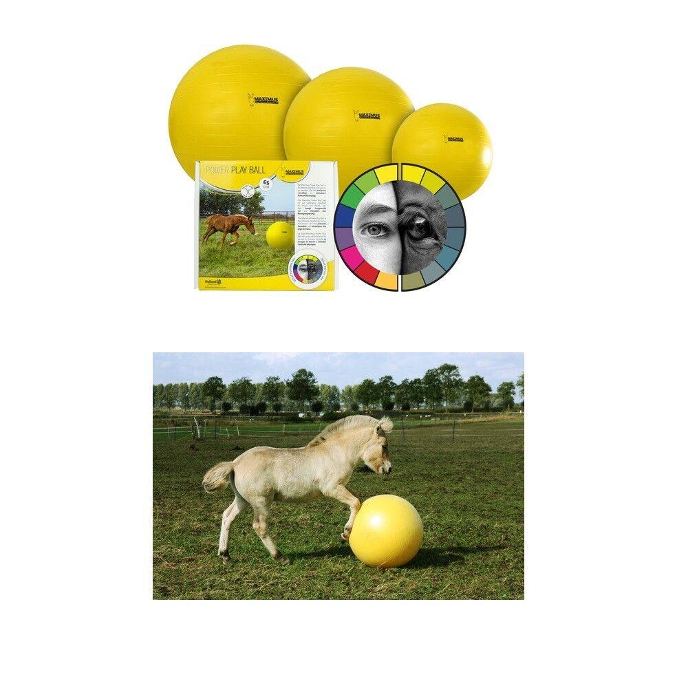 Pferde Spielzeug Maximus Power Play Ball Pferde Spielball yellow Auswahl 65 75 100