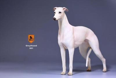 """1//6 Scale Greyhound hunting dog Dalmatian For 12/""""in Action Figures Toys"""