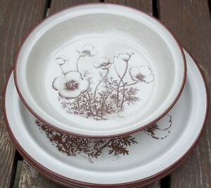 SET-OF-2-NORITAKE-DESERT-FLOWERS-DINNER-PLATES-and-A-ROUND-SERVING-BOWL
