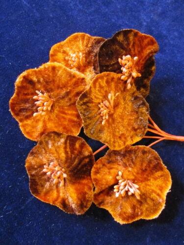 "Millinery Flower Velvet 2/"" Orange Rust Brown 6pc Lot for Hat Wedding or Hair Y10"