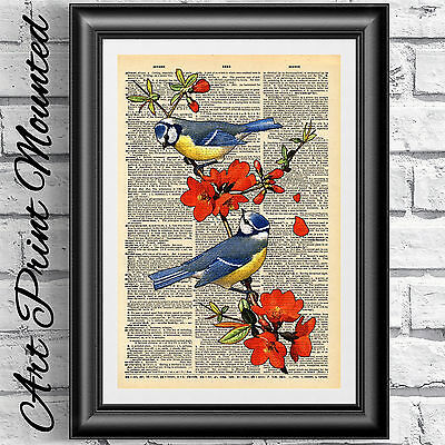 ART PRINT ON ORIGINAL ANTIQUE BOOK PAGE Mounted Birds Flowers WALL HANGINGS Gift