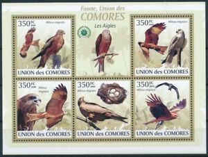 39469-TB-Mnh-Comores-2009-BL1696-1700-Faune-Oiseaux-Les-Aigles