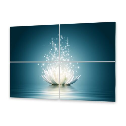 Mehrteilige Bilder Glasbilder Wandbild Magische Lotusblüte