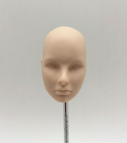 Fashion Royalty Color Infusion Agnes 1:6 scale Integrity doll Head FR Cream skin