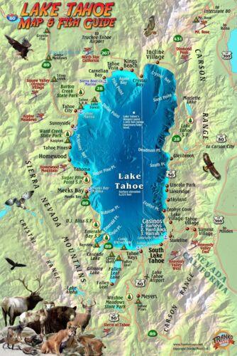 Lake Tahoe Map /& Fish Card Waterproof by Franko Maps
