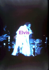 ELVIS-PRESLEY-WITH-LONG-FRINGES-11-10-70-OAKLAND-CALIFORNIA-5x7-PHOTO-CANDID-2