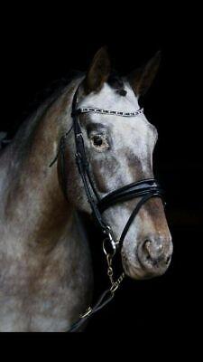 Broeband 6mm LCT+TOPAZ Details about  /Adams-Tack Horse Bridle Crank Curve Noseband