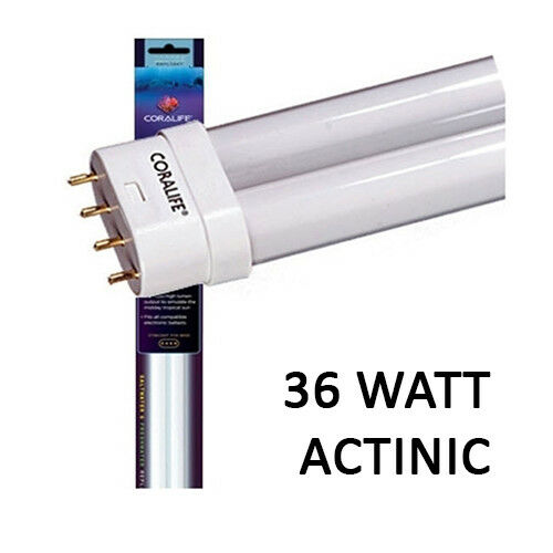 CORALIFE 36W ACTINIC STRAIGHT PIN PC LAMP 16 INCH BULB BIOCUBE 29 BLUE COLOR