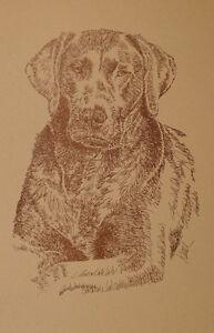 CHOCOLATE-LABRADOR-RETRIEVER-DOG-ART-PRINT-78-by-Kline-LAB-Dogs-name-added-free
