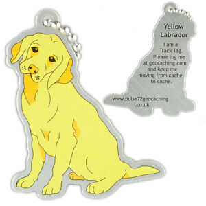 Yellow-labrador-chien-track-tag-pour-geocache-travel-bug-geocoin