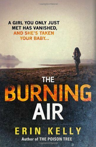 1 of 1 - The Burning Air,Erin Kelly