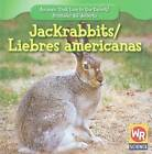 Jackrabbits/Liebres Americanas by JoAnn Early Macken (Hardback, 2009)