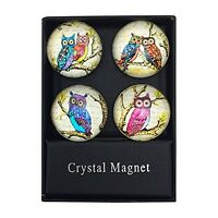 Funky Owl Print Glass Domed Magnets By Value Arts, Set Of 4 Assorted
