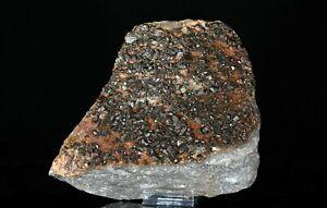 RADIUM-BARITE-or-Radian-Baryte-nice-and-rare-mineral-specimen-Czech-Republic