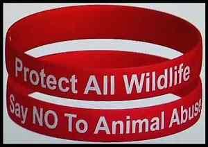 039-PROTECT-ALL-WILDLIFE-SAY-NO-TO-ANIMAL-ABUSE-039-WRISTBAND-MakeCrueltyHistory