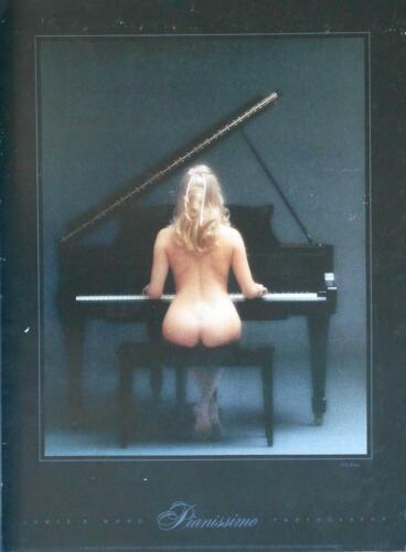 "James /""Pianissimo/"" 23x18 Nude Continuous Tone Poster Wood Slightly damaged"