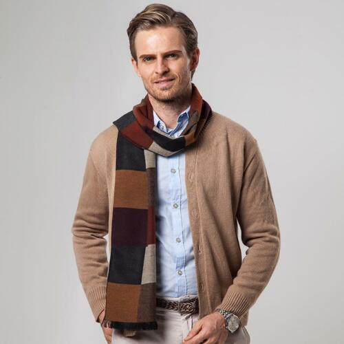 Business Style Warm Winter Scarf For Men Cashmere Soft Fabric Large Size Scarves