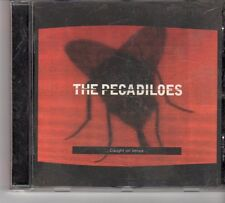 (FT618) The Pecadiloes, Caught On Venus - 1998 CD