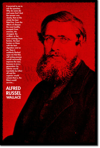 Alfred Russel Wallace Art Print Photo Poster Gift Quote Russell Evolution