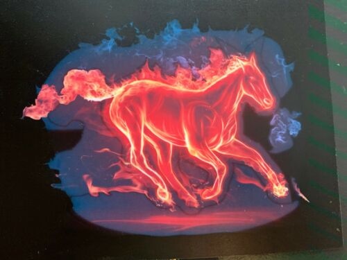 SOUND ACTIVATED FLASHING LED PANEL   1ST FIRE HORSE