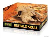 Hagen Exo Terra Buffalo Skull