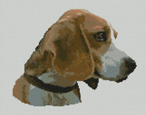 "Beagle Cabeza Perro puntada cruzada contada Kit 11,5 /""x 9/"" 29,2 cm x 23 cm d2296"