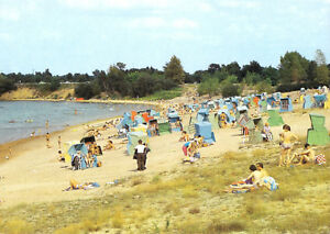 AK-Senftenberg-OT-Grosskoschen-Senftenberger-See-Strand-belebt-1990