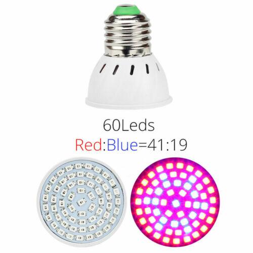 LED Grow Light E27 Lamp Bulb For Plant Veg Hydroponic Full Spectrum Growing Lamp