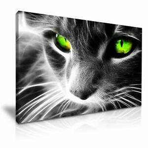 Green-Eyes-Cat-CANVAS-WALL-ART-PICTURE-20X30-INCHES