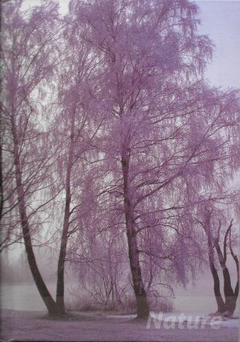 """DIN A5 15 x 21 cm Notizbuch // Tagebuch Motiv /""""Winter/"""" 144 Seiten"""