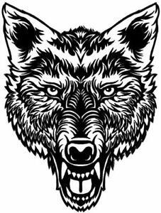 VEGASBEE-BIG-LONE-WOLF-HEAD-BLACK-WHITE-BIKER-VEST-JACKET-IRON-ON-PATCH-12-034-USA
