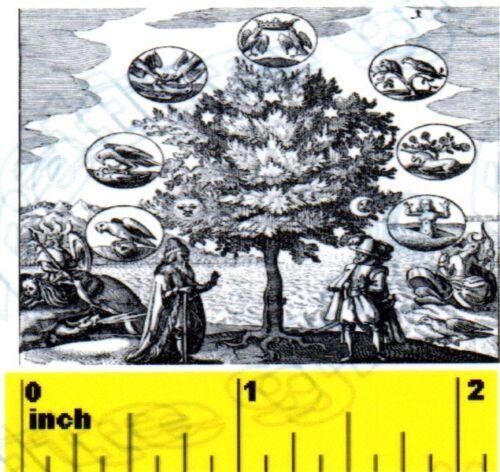 DOLLSHOUSE Mini Halloween Witch Alchemist Wizard Magic Print  CDHM 1:12