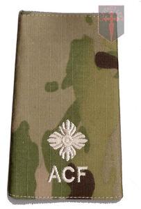 Pair Ivory on Multicam MTP 2nd Lieutenant RANK SLIDES