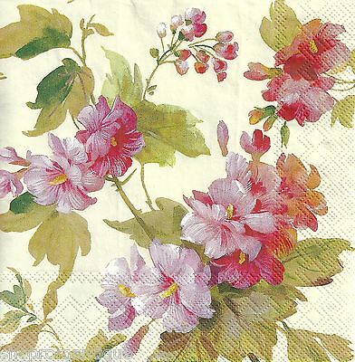 4 x Single PAPER NAPKINS Summer Beautry Cream Roses Floral DECOUPAGE or CRAFTS
