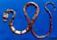 Fishes Banded Snake Eel Myrichthys colubrinus Taxidermy Oddities Curios