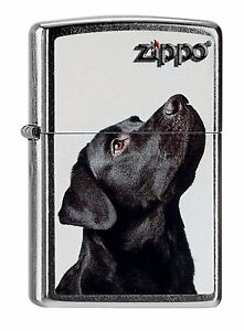 Zippo-Mechero-Black-Laboratorio-Labrador-60000206