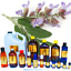 TOP-SELLING-Essential-Oils-1-oz-to-64-oz-ONE-STOP-SHOP-100-Pure-amp-Natural thumbnail 8