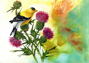 GOLDFINCH-with-THISTLES-Original-12X16-Acrylic-Bird-Painting-by-Sherry-Shipley
