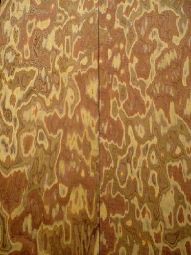 Olive Maser Brett Wurzelholz Olivenholz SaRaiFo 83x27cm 26mm