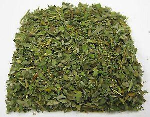 GUDMAR-LEAVES-Gymnema-Sylvestre-Indian-Herbs-Natural-and-Fresh