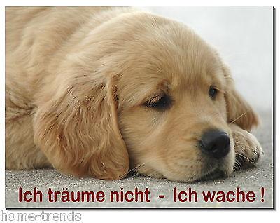 Hunde Humorvoll Labrador-hund-aluminium-schild-0,5-3 Mm Dick-türschild-warnschild-hundeschild SchöNe Lustre