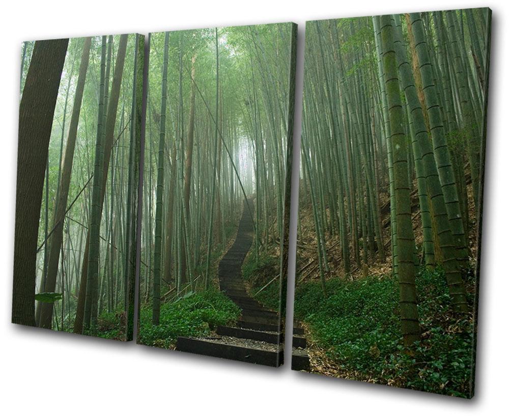 Landscapes Landscapes Landscapes Japanese Forest TREBLE TELA parete arte foto stampa d0b78a