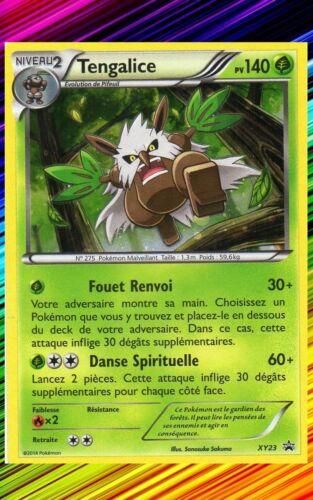 Tengalice Holo Promo Carte Pokemon Française XY23