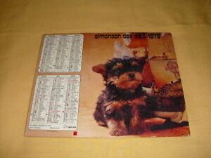Almanach Des P.t.t. 1979 Tarn-81 Chiots Chatons Yfblcsbj-07214047-107154615