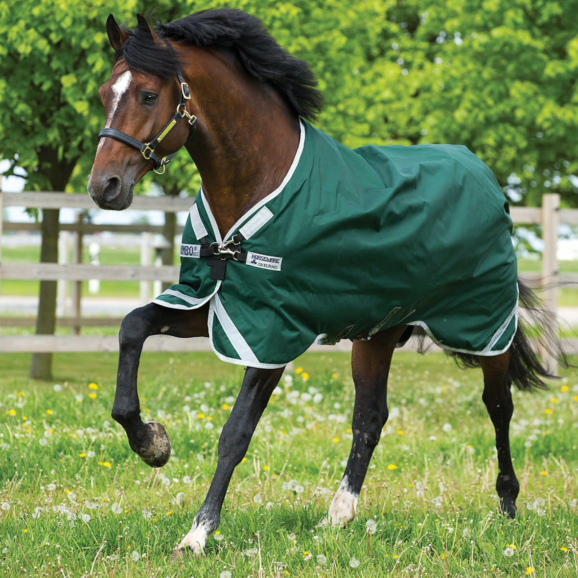Rambo Heavy Original Turnout Blanket w Leg Arches (400g) - Green - Differ Sizes