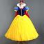 Adult Costume Birthday Disney Princess Snow White Frozen Cosplay Dress Xmas Gift