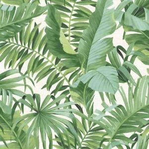 A-Street-Motifs-Solstice-Palmier-Feuille-Papier-Peint-Vert-fine-decor-FD24136